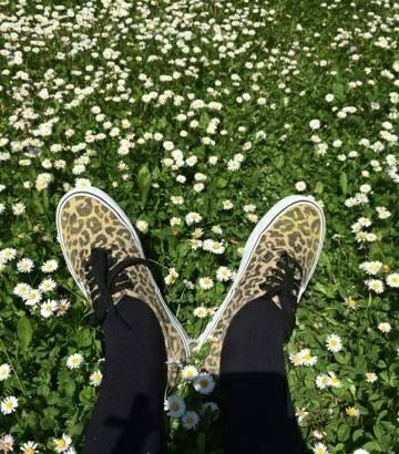 vans_leopard